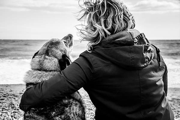 dog-photogaphy-brighton-jane