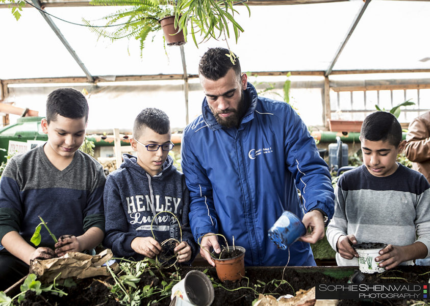 Jerusalem-school - generation share